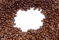 Fresh coffee beans. On a white background with room for text Stock Images