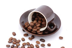 Fresh coffee beans Stock Photography