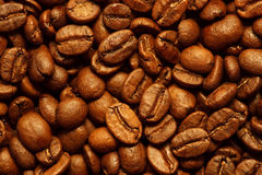 Fresh coffee beans background. Background of delicious freshly roasted coffee beans Royalty Free Stock Images