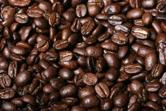 Fresh coffee beans background Royalty Free Stock Images