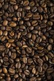 Fresh coffee beans background macro Stock Image