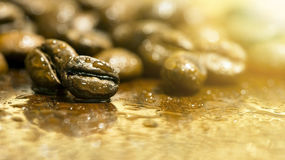 Fresh coffee beans banner Royalty Free Stock Photography