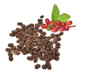 Fresh coffee beans isolated on white background.  Royalty Free Stock Images