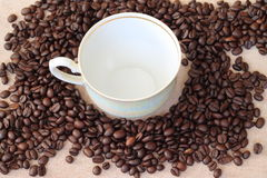 Fresh coffee. Coffee beans ready for grinding Royalty Free Stock Image