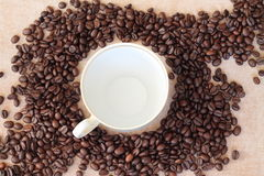 Fresh coffee. Coffee beans ready for grinding Royalty Free Stock Images