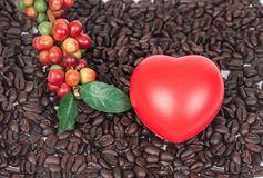 Fresh coffee beans with red heard sign on dry coffee beans. Background Royalty Free Stock Photos