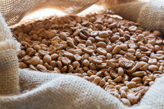 Fresh coffee beans. In a sack Royalty Free Stock Photo