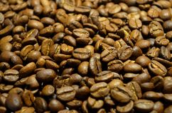 Fresh coffee beans. A scattering of fresh coffee beans on the table Royalty Free Stock Photos