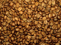 Fresh coffee beans. A scattering of fresh coffee beans on the table Royalty Free Stock Photo