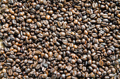 Fresh coffee beans, selective focus Stock Photo