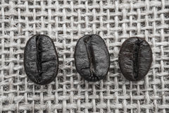 Fresh coffee beans, selective focus Stock Photos