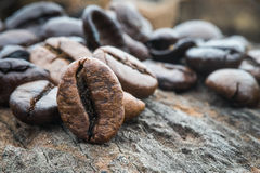 Fresh coffee beans, selective focus Royalty Free Stock Images