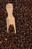 Fresh coffee beans and a timber shovel Royalty Free Stock Photos