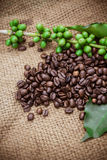 Fresh coffee beans on wood background Royalty Free Stock Image
