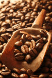 Fresh coffee beans in a wooden scoop Royalty Free Stock Image