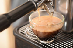 Fresh coffee flowing into a cup. From espresso machine Stock Image