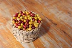 Fresh coffee grains Royalty Free Stock Photos