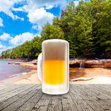 Fresh cold beer Stock Photos