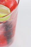 Fresh and cold cocktail on white background Stock Photography