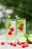 Fresh cold drink water ice cubes peppermint lime raspberry Royalty Free Stock Image