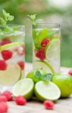 Fresh cold drink water ice cubes peppermint lime raspberry. Outdoor summer Royalty Free Stock Photo