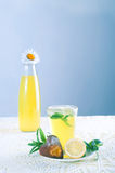 Fresh cold lemonade with mint leaves and cookies Royalty Free Stock Image