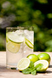 Fresh cold refreshment drink mineral water soda with lime and mint Royalty Free Stock Photos