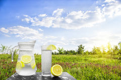 Fresh cold water with lemon and ice in a pitcher on the table.Homemade lemonade with fresh citruses on the background of nature. Royalty Free Stock Photography