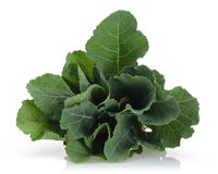 Fresh Collard Greens Stock Photo