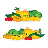 Fresh of collection set fruits on white background Stock Images