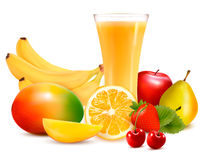 Fresh color fruit and juice. Vector Stock Image