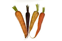 Fresh Colored Carrots Stock Images