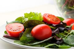 Fresh colored cherry tomato salad with arugula, Basil, spinach, salad and olive oil dressing. selective focus. Fresh cherry tomato salad with arugula Basil stock image