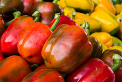 Fresh Colored paprika (pepper) Stock Photos