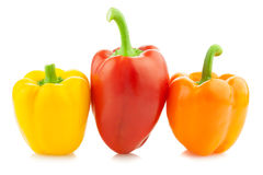Fresh Colored Peppers / Paprika /  Royalty Free Stock Image