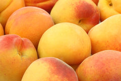 Fresh colorful apricots background Royalty Free Stock Photos