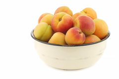 Fresh colorful apricots in an enamel bowl Stock Images