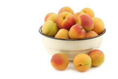 Fresh colorful apricots in an enamel bowl Royalty Free Stock Photo