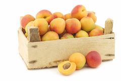 Fresh colorful apricots in a wooden box Stock Images