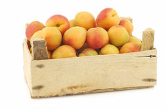 Fresh colorful apricots in a wooden box Stock Photography
