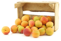 Fresh colorful apricots in a wooden box Stock Photos