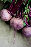 Fresh beetrot. Fresh colorful beetrot on green Stock Image