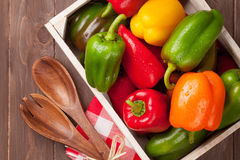 Fresh colorful bell pepper Royalty Free Stock Photography