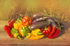 Fresh colorful bell peppers, aubergines on wood. Royalty Free Stock Images