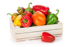 Fresh colorful bell peppers in box Royalty Free Stock Photography