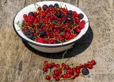Fresh colorful berries in bowl on rustic wooden table Stock Photo