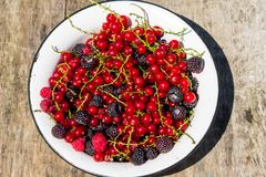 Fresh colorful berries in bowl on rustic wooden table. Fresh colorful berries on wooden background. Blackberries, raspberries, red and black currant in bowl on Royalty Free Stock Image