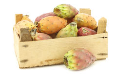 Fresh colorful cactus fruit in a wooden crate Stock Photography
