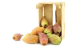 Fresh colorful cactus fruit in a wooden crate Stock Images