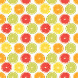 Fresh colorful citrus fruits seamless pattern Stock Images